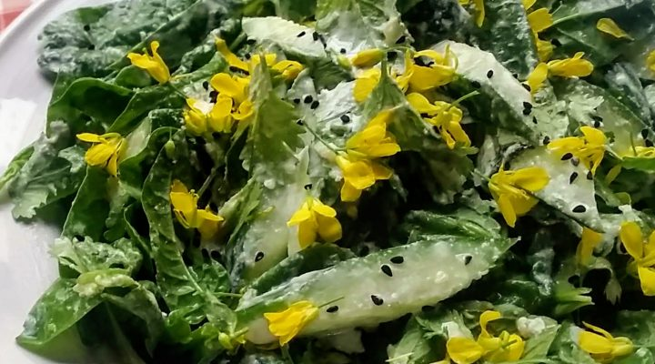 Cucumber, Spinach & Herb Salad with Lemon Ginger Dressing